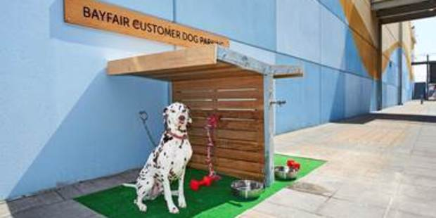 Check out this luxury dog parking. Photo / Supplied
