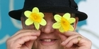 Watch: Daffodil Day in Tauranga