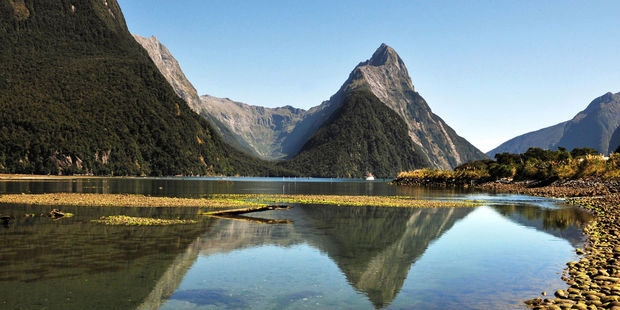 Can you blame them? Mitre Peak in Fiordland National Park. Photo / 123RF.com