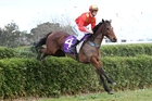 Kick Back gave a great display of jumping and stamina in winning the Pakuranga Hunt Cup last month. Picture / Race Images