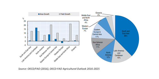 Area and yield by region: Area and yield growth 2025 vs. 2013-15 (left) and share of agricultural area in 2025 (right).