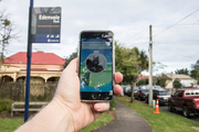 A group of Napier Pokemon hunters caught more than they bargained for when they managed to nab a masked robber. Photo/ file