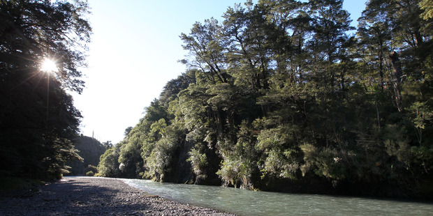WIN: Forest & Bird has successfully appealed a DoC land swap intended to facilitate the Ruataniwha Dam. PHOTO FILE