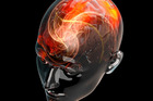 The human brain is one of the most complex systems ever known. Photo / Getty Images
