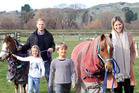 Mike and Jacqueline Taylor with children Zach and Heidi and ponies Dolce and Banner. PHOTO/PAUL TAYLOR
