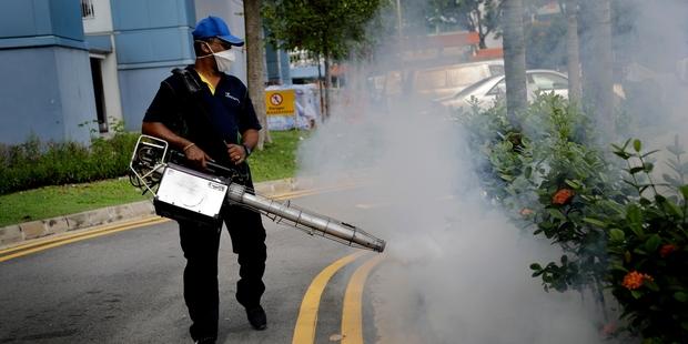 Olympics had no Zika cases, World Health Organization says