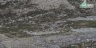 Watch: Watch: Over 300 reindeer killed by lightning strike in Norway