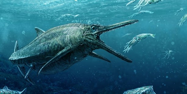 Half a century after it was first discovered, the fossil of an ancient Scottish ichthyosaur is finally being studied. Picture / artist's impression