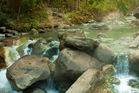 Water close to 70 degrees rushes past rocks in Arkansas' Hot Springs National Park. Photo / 123RF