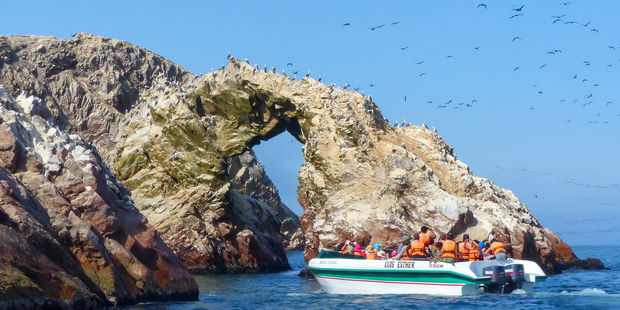 The Ballestas Islands are a five-hour drive away from Lima. Photo / 123RF