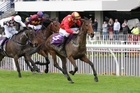 Kick Back beats Amanood Lad and Zed Case in the Great Northern Steeplechase on Saturday. Photo / Trish Dunell