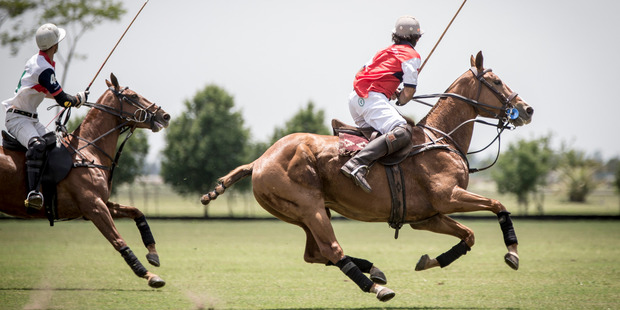 The Puesto Viejo Polo club. Photo/Michael Craig