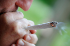 Marijuana could open a tax spigot and let cities and states reduce spending on drug enforcement. Photo / Getty