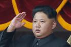 North Korean leader Kim Jong Un salutes at a parade in Pyongyang, North Korea, 2015. PHOTO/File