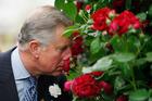 Britain's Prince Charles. Photo / AP