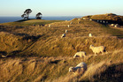 The Papamoa Hills will close for almost four months over spring and summer. Photo/File