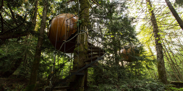 Globe-like rooms are suspended from the trees at the Free Spirit Spheres resort on Vancouver Island. Photo / Creative Commons image by Flickr user Kyle Greenberg