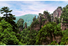 Zhangjiajie National Forest Park. Photo / 123RF