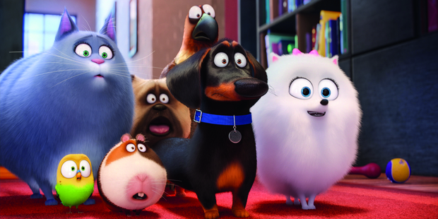 We're quickly introduced to a group of neighborhood mates in the film The Secret Life of Pets.