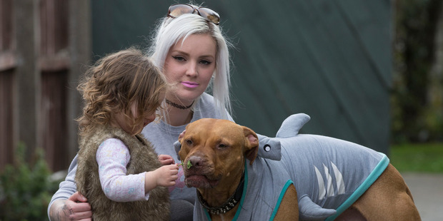 Loading Sarah Barry, from Hoon Hay, Christchurch, with her dog Chopper, and 2-year-old daughter Layla. Photo / Brett Phibbs