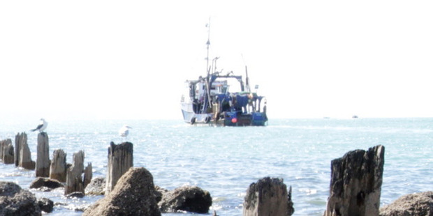 Commercial fishing boats were caught dumping tonnes of healthy fish. Photo / File