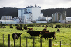 Fonterra looks set to report strong annual earnings at its result, due this month.