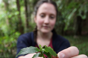 Aimee Leaming with a tradescantia beetle.