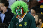 A dejected South African supporter during The Rugby Championship clash between Australia and South Africa. Photo / Photosport