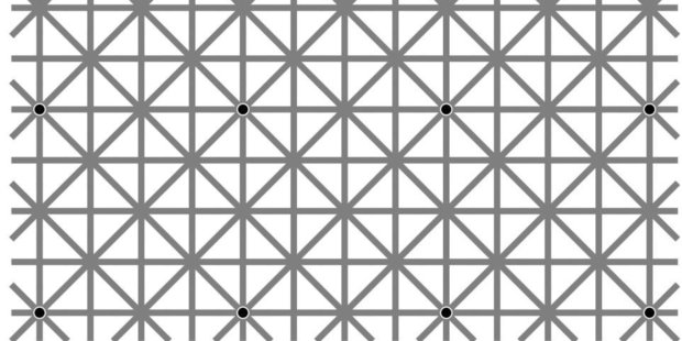 This black dot optical illusion is the latest to cause a stir.  Photo / Facebook / Will Kerslake