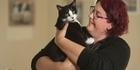 Cat lover discusses proposed cat rules