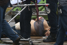 Ahmad Khan Rahami is taken into custody after a shootout with police. Photo / AP