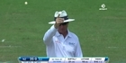 Watch: Cricket - Williamson and Latham anchor New Zealand