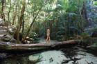 Rainforest walk at Fraser Island, Queensland.