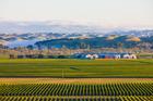 Craggy Range's Giants Winery.