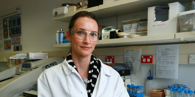 Auckland University motor neurone disease researcher Dr Emma Scotter studies cells grown from donated brains. Photo / Doug Sherring