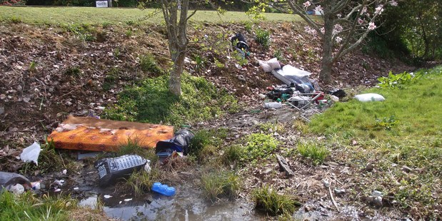 Reports of dumping are a daily occurrence for council clean-up crews.