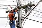 Low hanging lines were responsible for the power has been turned off in areas of West Auckland this morning. Photo / File