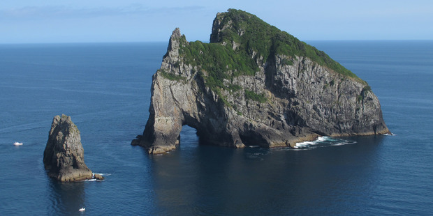 Motukokako Island. Photo / NZ Herald