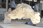 Eleven thousand bales of wool were on offer at Thursday's South Island auction. Photo/File