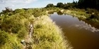 Land, Air, Water, Aotearoa River of the Month video series