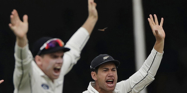 An insect flies past Black Caps fielders Ross Taylor and Tom Latham. Photo / AP