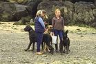 The photo of the three women and their dogs sparked debate after being shared on Facebook. Photo / Facebook
