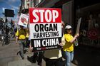Members of Falun Gong or Falun Dafa protest concerning the torture and organ harvesting of fellow members in mainland China. Photo / Getty Images