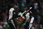 Martin Guptill and Kane Williamson shared an unbroken stand of 171. Photo / Getty Images