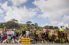 Blackbridge Rd residents have started a society to protest the landfills. Photo / Greg Bowker