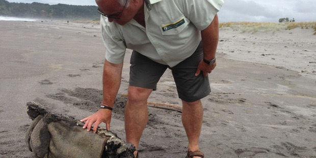 Matt Cook with a piece of wreckage of the White Island tour ship that washed up at Coastlands Beach