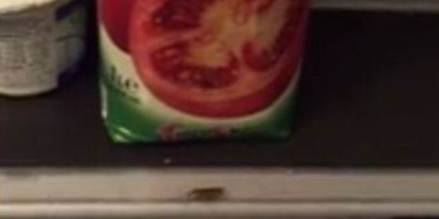 Cockroaches were filmed running around an open bottle of tomato juice. Photo / Facebook
