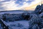 Snowy scene taken near Otterburn, Northumberland. Photo / Twitter / Met Office