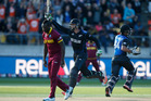 Martin Guptill smashed the highest ever score at a Cricket World Cup. Photo / Mark Mitchell