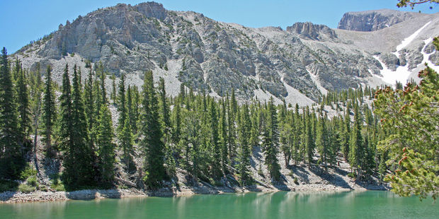 A lake fringed by bristlecone pine forest in Great Basin National Park. Photo / 123RF